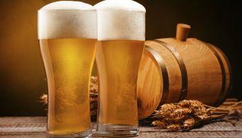 Pivom protiv puževa golaća!